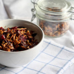 cranberry and chocolate granola